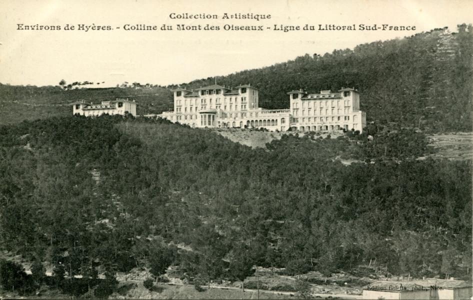 Cartes postales var for Oiseaux du sud de la france